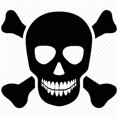 Logo ethical hacking (sécurité des sites)