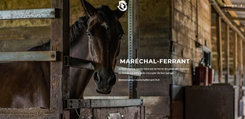 Aperçu du site web Marechal-ferrant76.fr