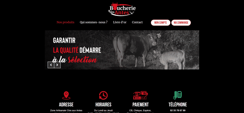 Aperçu du site web Boucherie des Antes
